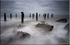 Stumps I (Rob Kendall (aka minolta mad)) Tags: sony devon ho westward a900