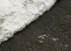 devant la porte (Julie70 Joyoflife) Tags: winter snow london photo hiver snowing neige icy 2010 flocons aroundme iarna tél ninge juliekertesz ilneige