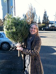 Tree Buying