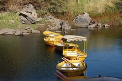 Yellow boats in Aswan (ABDO  EGYPT&Trkiye) Tags: greatshots topshots photosandcalendar worldwidelandscapes natureselegantshots panoramafotografico theoriginalgoldseal flickrportal