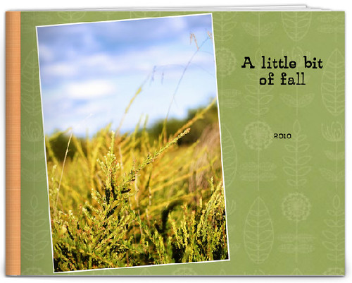 fall memories book