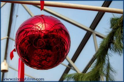 Holidays and diabetes - Santabetes?
