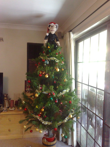 The Angel on top of our tree
