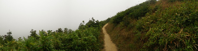 13/12/10 Foggy 14km Lunchtime Trail Run