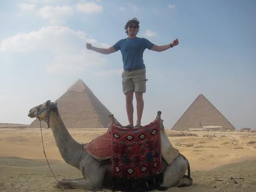 giza camel salute