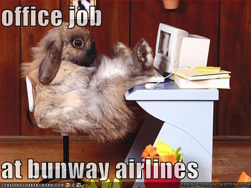 bunway airlines- dihasstories.com