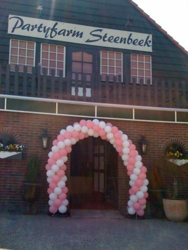 Ballonboog 6m Partyfarm Steenbeek