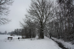 Gemert (Omroep Brabant) Tags: brabant weer omroepbrabant seizoenen sneeuwfotos weerfotos weerfoto sneeuwfoto wwwomroepbrabantnl brabantseseizoenen