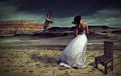 [フリー画像] グラフィックス, フォトアート, 人と風景, 女性, 後ろ姿, ウエディングドレス, 201012232100