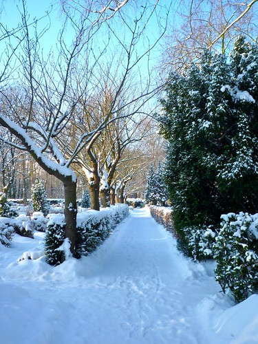 P1080966_style_zoomer_berlin_winter