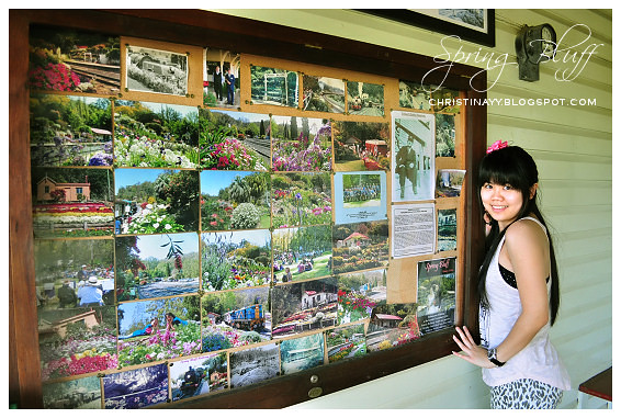 Spring Bluff Railway Station and Gardens 6