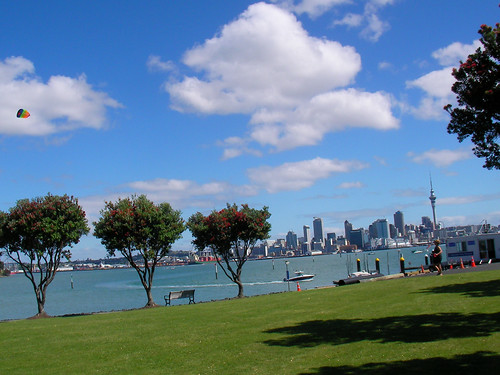 Auckland Kite Flying