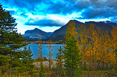 Fall on Swiftcurrent Lake (Deby Dixon) Tags: trees lake mountains fall tourism nature water clouds landscape outdoors photography travels nikon montana moody stormy aspens wildflowers glaciernationalpark deby allrightsreserved 2010 glacialmelt swiftcurrentlake manyglacier naturephotographer swiftcurrentlodge debydixon debydixonphotography