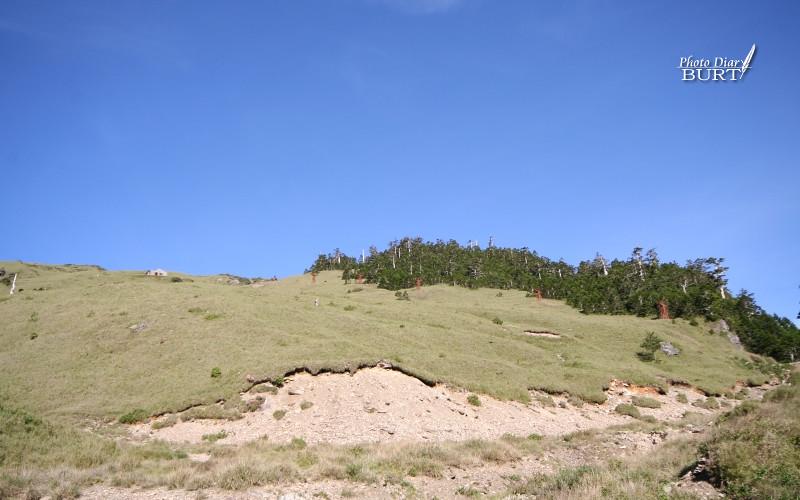 合歡東峰一面及廢棄的滑雪纜車塔柱