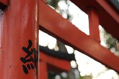 駒込稲荷神社 千本鳥居