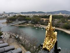 岡山城の、金の鯱(しゃちほこ)☆