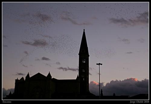 Sta.Maria Novella, Florencia