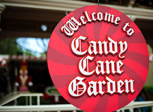 Welcome to Candy Lane Garden
