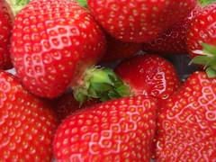 yummi (mareikeee) Tags: red summer food holland rot fruit essen strawberry sommer frucht erdbeere obst