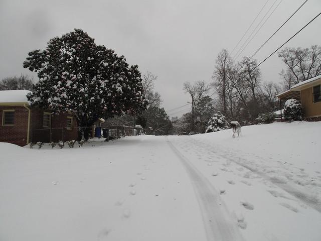 Snow Day 0290