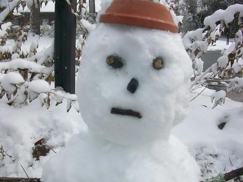 Dour snowman