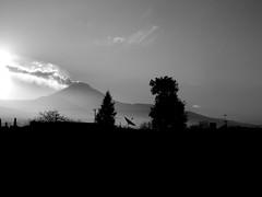 Popocatepetl (Daniel Iván) Tags: méxico mexico popocatepetl vulcano volcán blackwhitephotography blackwhitephotos