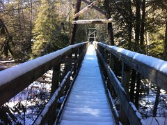 Toccoa Suspension Bridge