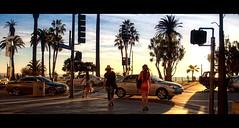 The Perfect Light. Day 109 ([Sebastien C.]) Tags: california street city sky urban cloud sun cars beautiful women warm outdoor pacificocean palmtree 365 18mm nikond80