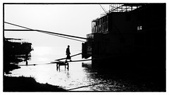 Birmanie - Contre-jour sur l'Irrawaddy  Bagan. (Gilles Daligand) Tags: bagan birmanie coucherdesoleil irrawaddy myanmar oldbagan noiretblanc monochrome wb contrejour riviere bateau