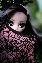 IMG_9862 (Cleo6666) Tags: draculaura collector draculaurasweet1600collectordoll monster high monsterhigh mattel deluxe deluxeedition