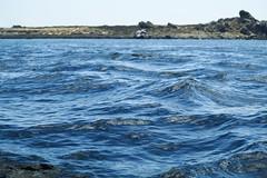Sea at Isla Damas, Coquimbo (mariocristian_venegasibarra) Tags: isladamas chile coquimbo agua mar olas waves water sea