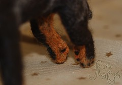 Needle felted dog: Beauceron 6 (~WelshStump~) Tags: dog dogs canine puppy needle felt felted felting fiber art arts soft sculpture replica breed purebred handmade ooak herd herding group fleece sheep wool border leicester shetland koolaid dyed dye natural beauceron beauce shepherd sheepdog french bergerdebeauce bas rouge cropped ears black rust tan harlequin arlequin merle