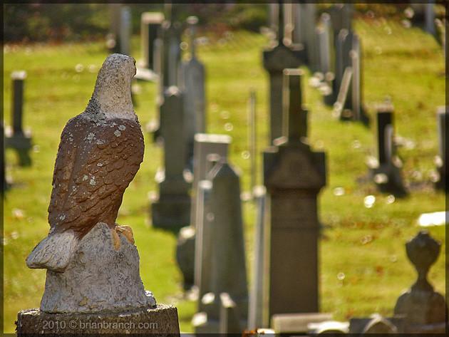 P1120688_cemetery_eagle