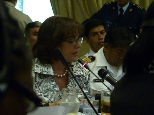 Defense Minister of Argentina Nilda Garré