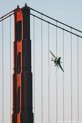 Golden Gate Hornet (mvonraesfeld) Tags: show sanfrancisco california ca tower aircraft aviation military air navy jet airshow goldengatebridge usn fleetweek 2010 fa18 superhornet fa18f img4359