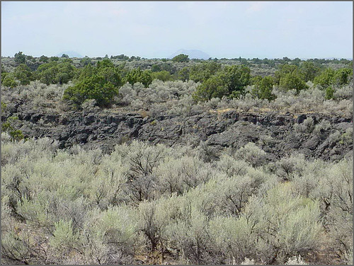 Hells Half Acre; view of lava field