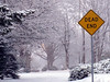 Dead End (Glenn Harris (Clintriter)) Tags: street trees white snow storm sign yellow oregon hoodriver deadend platinumheartaward