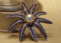 Diamond Sea Star with Pearl - Capri Italy (Amberinsea Photography) Tags: italy beautiful diamonds capri design fantastic diamond pearl fabulous windowshopping brosch diamondseastar