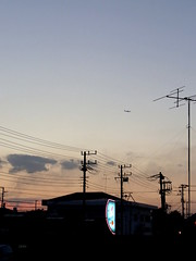 (SaiSakaki) Tags: sunset sky neon dusk cables    airliner