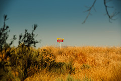 The Promised Land (Mondomac) Tags: life food silly color sign fun desert fast burgers irony ironic salvation innout