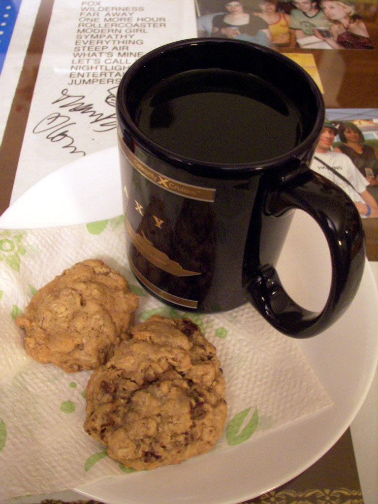 Salty Oatmeal Cookies