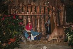 Weihnachtskrippe Minoritenkirche - Kln (Skyart82) Tags: christmas church germany weihnachten deutschland europe kirche cologne weihnachtszeit kln nrw rheinland krippe weihnachtskrippe nativityscenes belenes presepi creches sakralbau