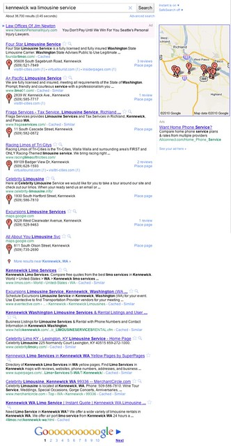 Google Places SERP Displays #6