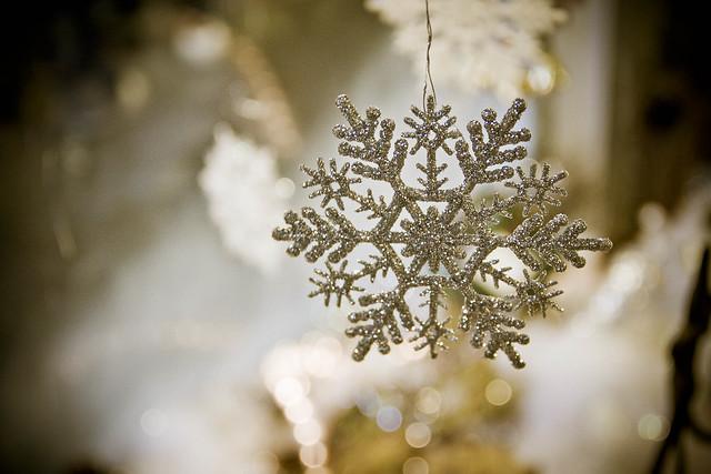 Dahlonega Snowflake
