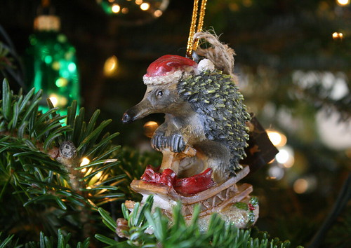 Echidna Ornament