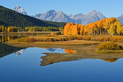 Oxbow Bend (bhophotos) Tags: travel autumn trees usa mountains reflection nature water colors river landscape geotagged golden nikon day clear snakeriver wyoming aspen tetons grandtetonnationalpark gtnp 80200mmf28dnew d700 jacksonholevalley gp1gps projectweather pwfall