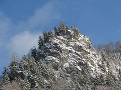 The Snow-Rock - Austria (Been Around) Tags: schnee trees winter sky mountain snow mountains alps cold tree nature rock forest austria österreich europa europe december advent niceshot travellers natur eu himmel bluesky berge alpen dezember wald oberösterreich autriche austrian aut felsen oö ö upperaustria steyrling 5photosaday snowrock a concordians thisphotorocks worldtrekker visipix pyhrnpriel expressyourselfaward flickrunitedaward bauimage pyhrnprielregion districtkirchdorfanderkrems hintertrissl