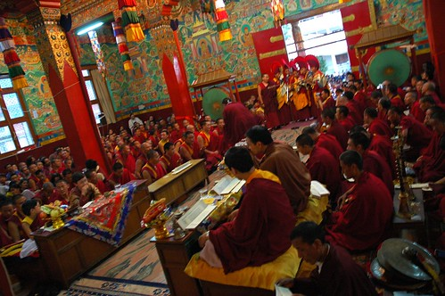 A break in prayers, Buddhist monks singing to the Senior Lama, a song of devotion, Tharlam Monastery of Tibetan Buddhism, Boudha, Kathmandu, Nepal