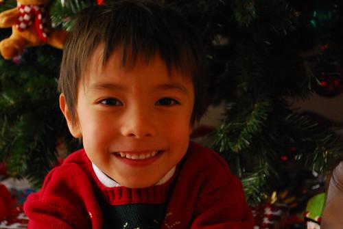 happy hiro and the tree