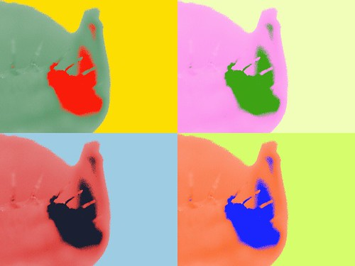 Warhol effect used on the stem end of the Venus Fly Trap